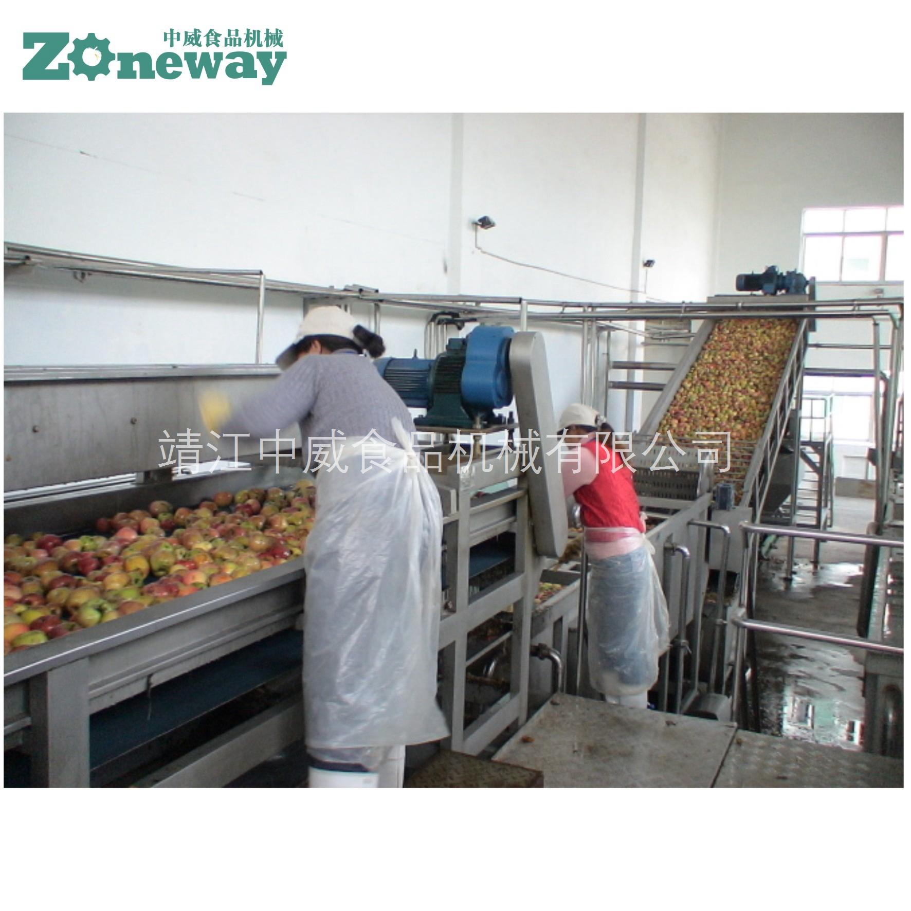 苹果汁、浓缩果汁饮料生产线加工设备